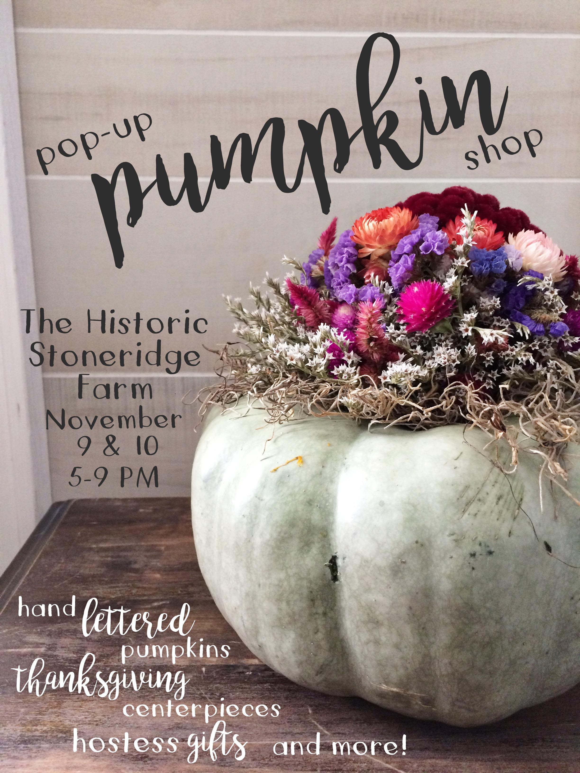 pop up pumpkin pic.JPG