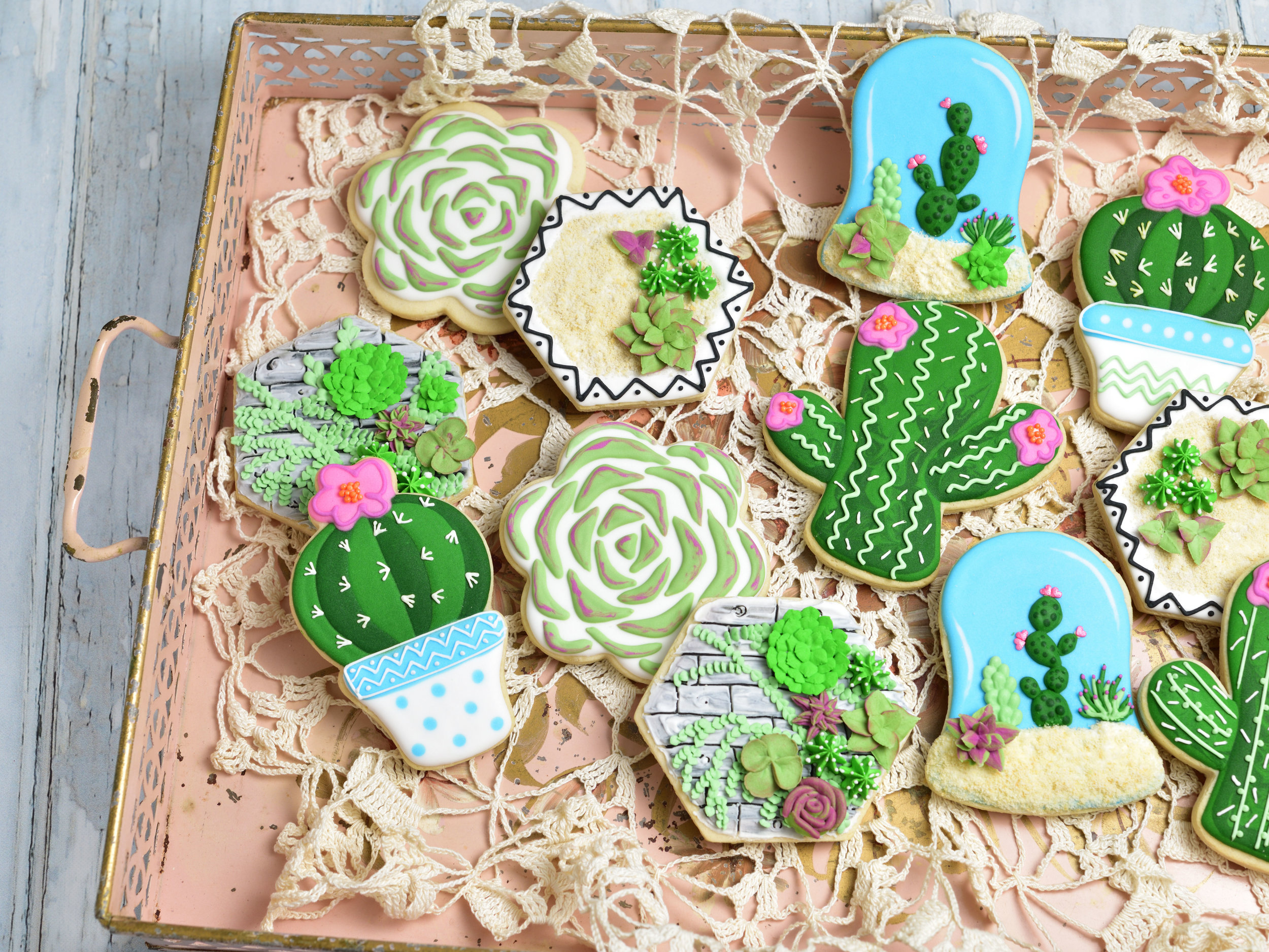 Succulent Cookie Workshop With Haniela Sunday August 5th 1 3 30 Pm The Craftery