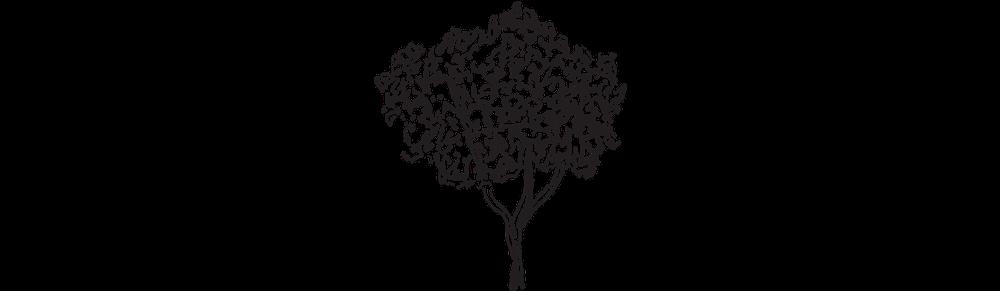 LHF_tree.png