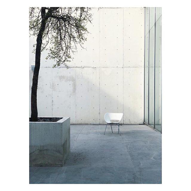 Concrete courtyard  Architecture by Teodoro González de León (#teodorogonzálezdeleón)