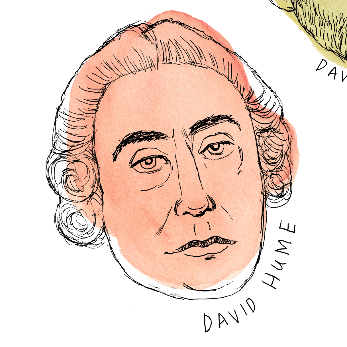 daves_colored_hume.png