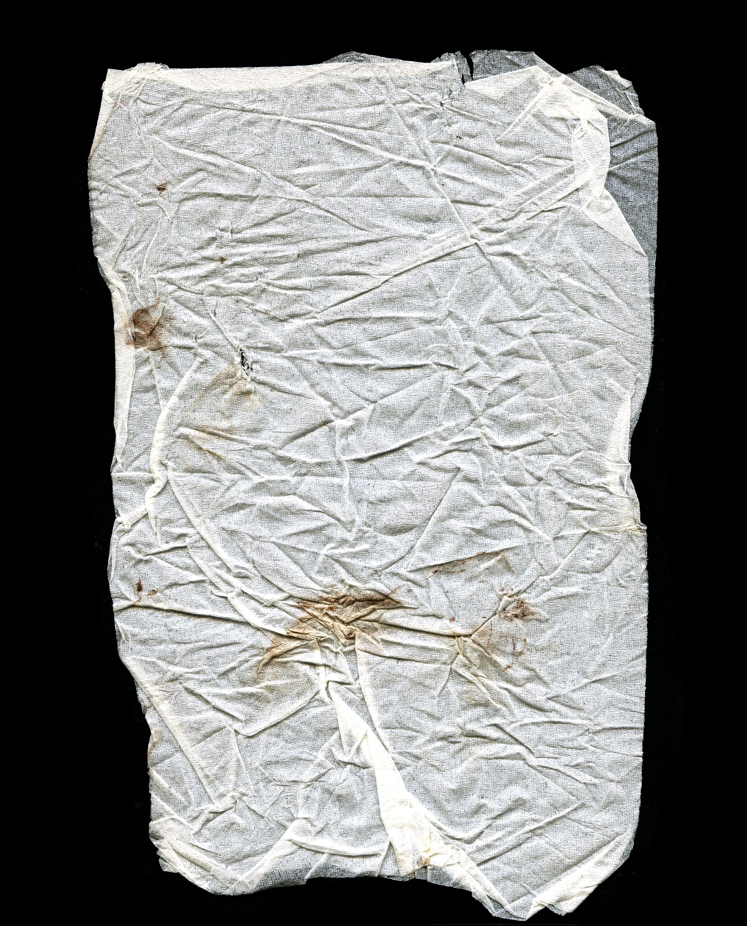 Tissue No. 1, Grandpa's Stroke, 2013.