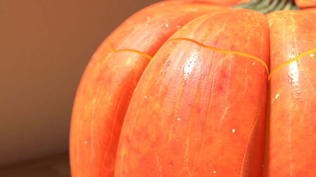 Pumpkin_CloseupSurface.v1.rgba.jpg
