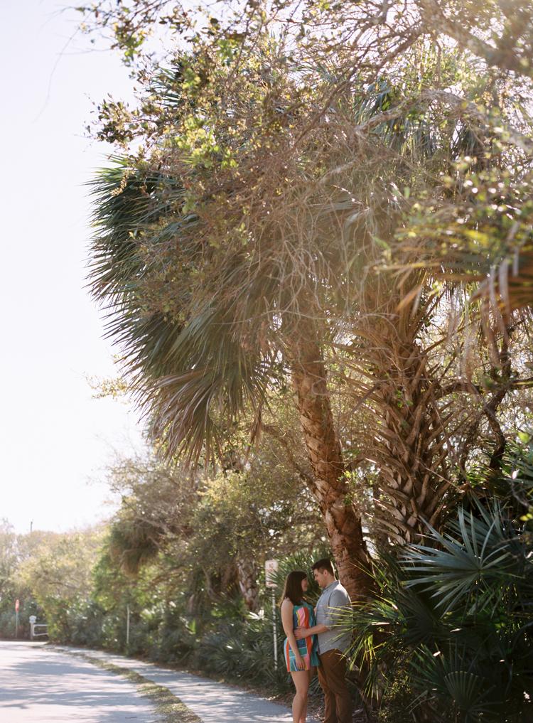 couple-cuddling-under-palm-tree.jpg