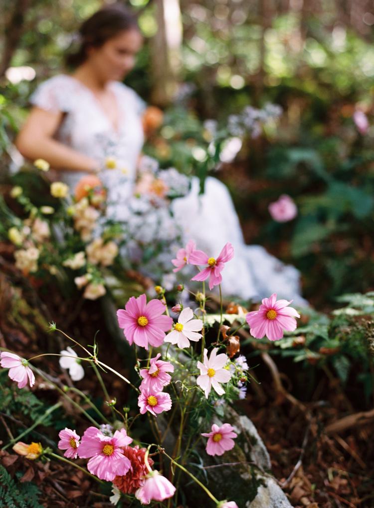 cosmos-for-mountaintop-wedding-e-m-anderson.jpg