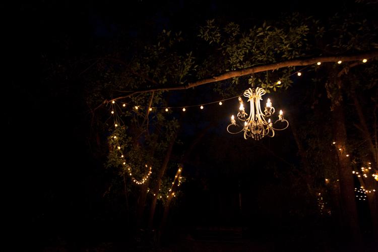 jacksonville-wedding-photographer-bridle-oaks-71.jpg