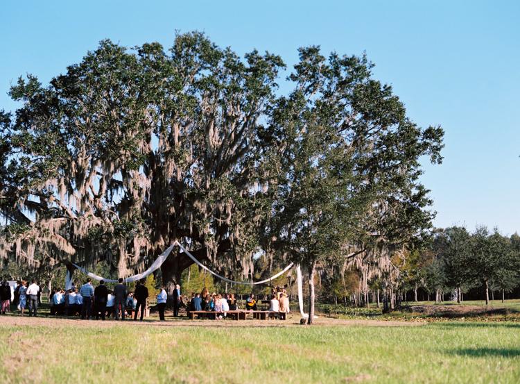 tree-ceremony-site-congaree-and-penn.jpg