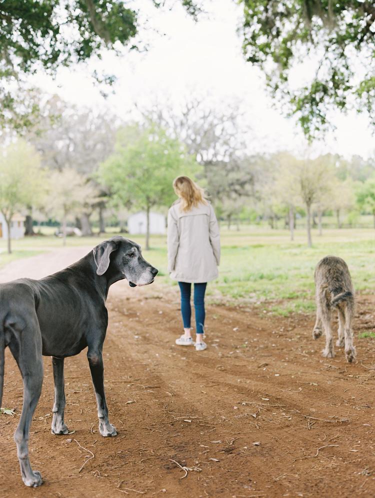 jacksonville-farm-Lindsey-Meyer-19.jpg