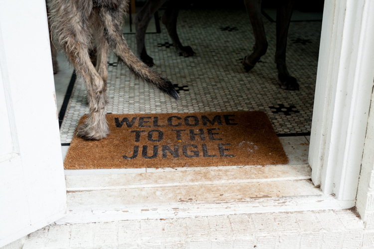 jacksonville-farm-Lindsey-Meyer-35.jpg