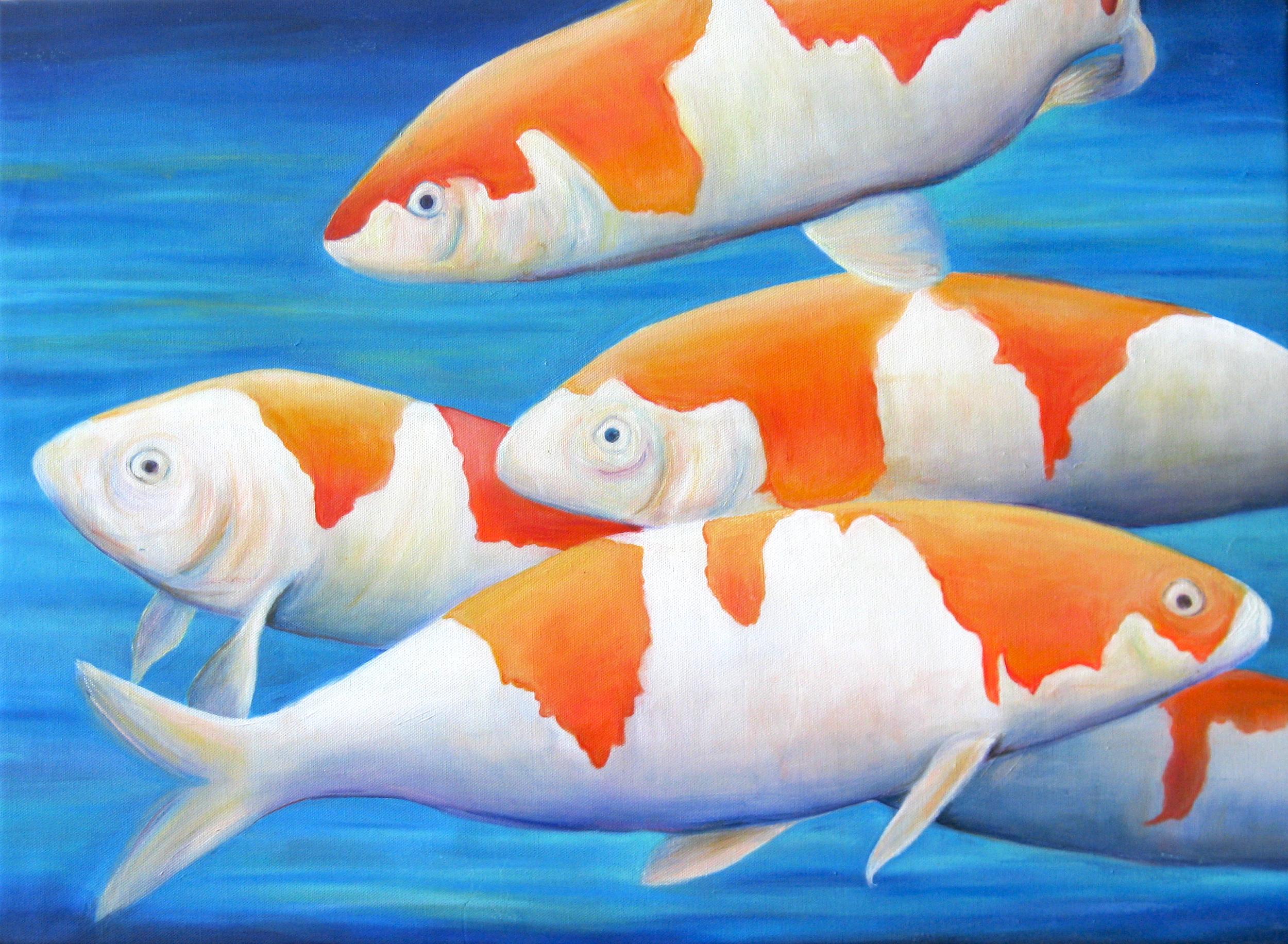 Coi Fish