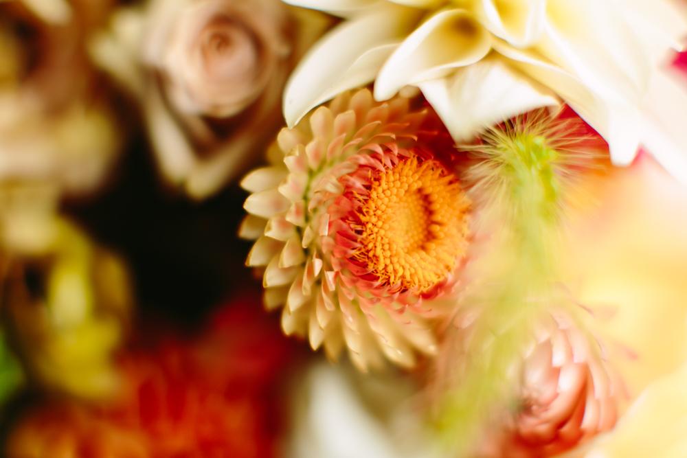 05_sam+sylvia_florals_KOP.jpg