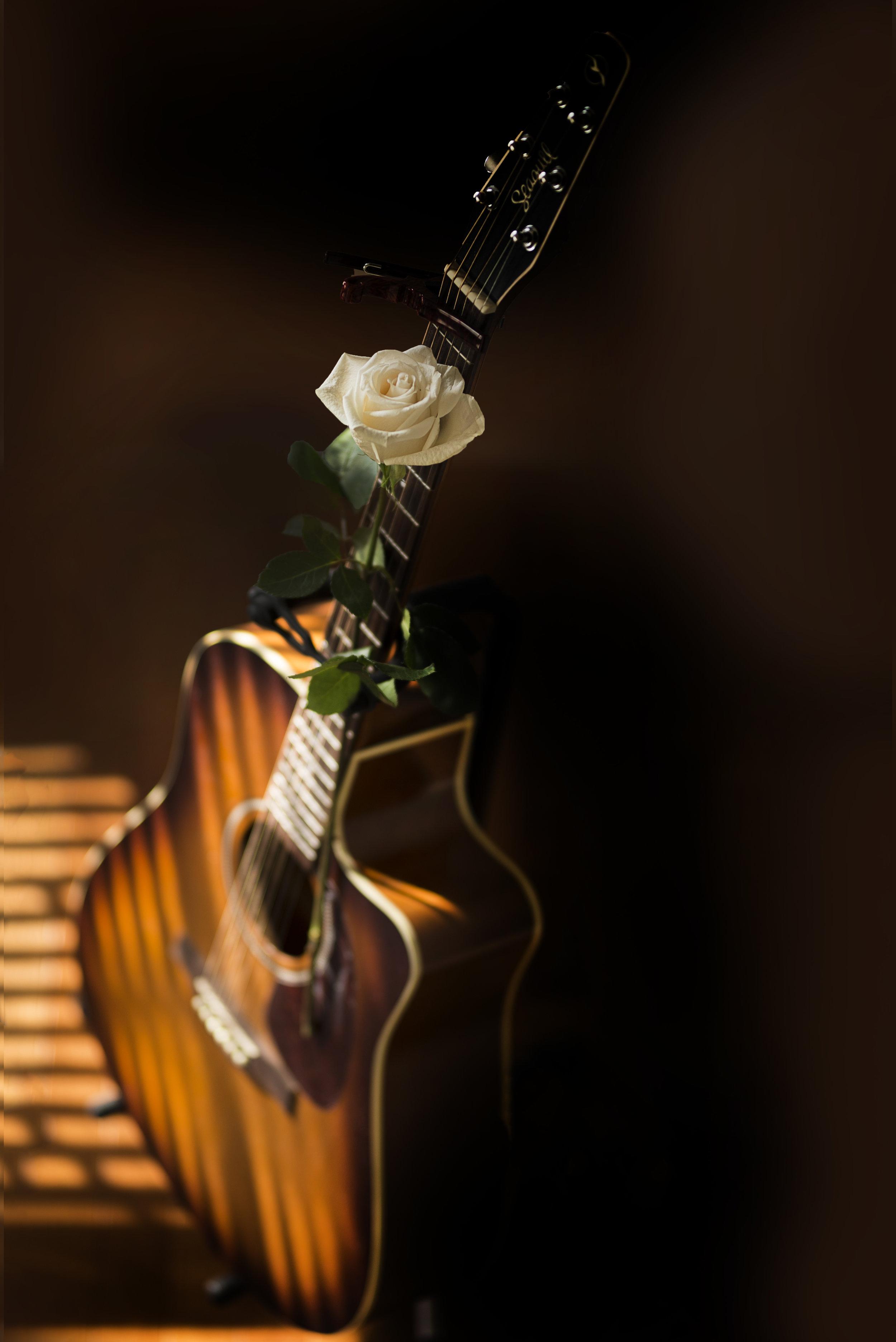 GuitarNRose-HR-SimiJois-2017.jpg