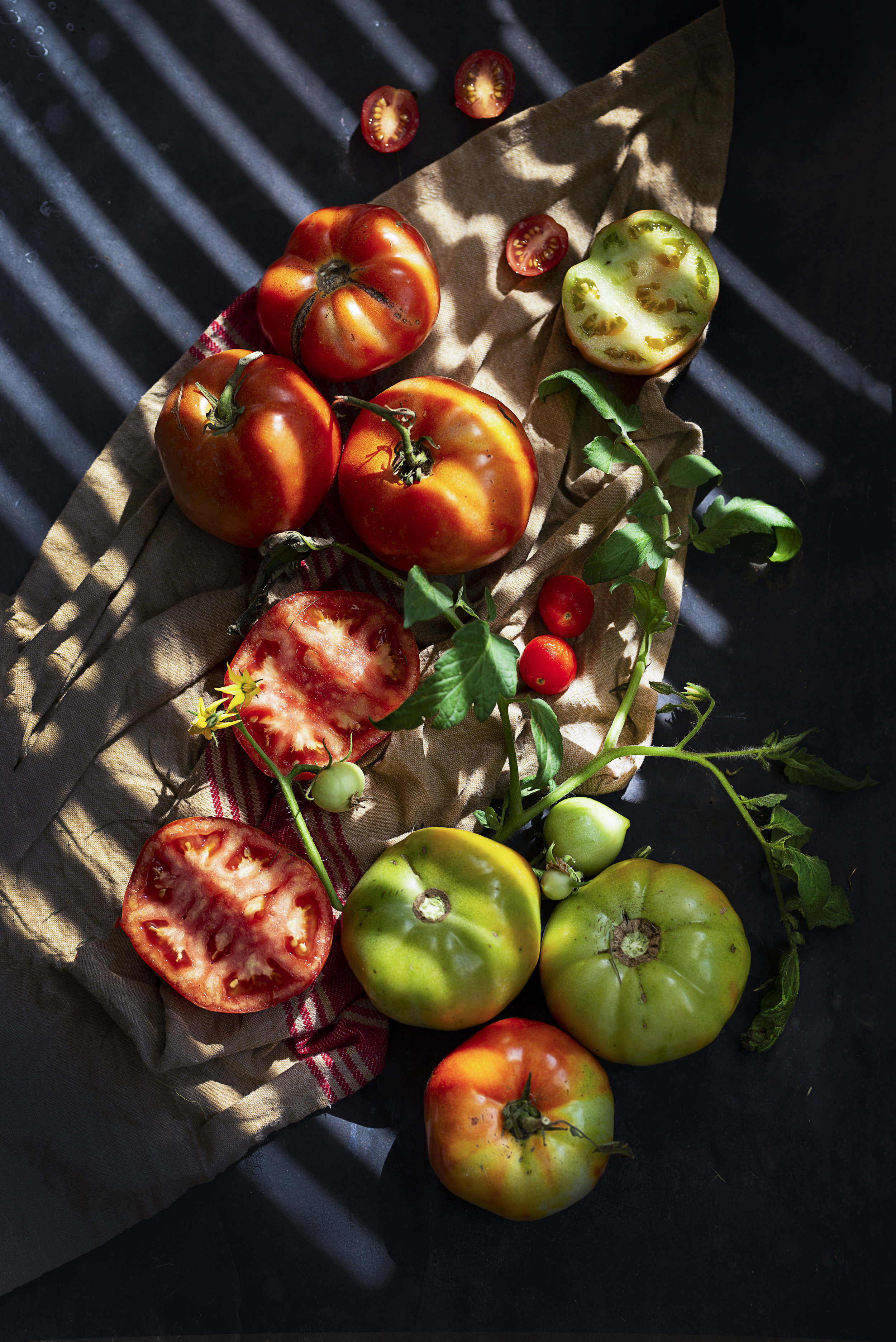 Tomatoes-HR-SimiJois-2018.jpg