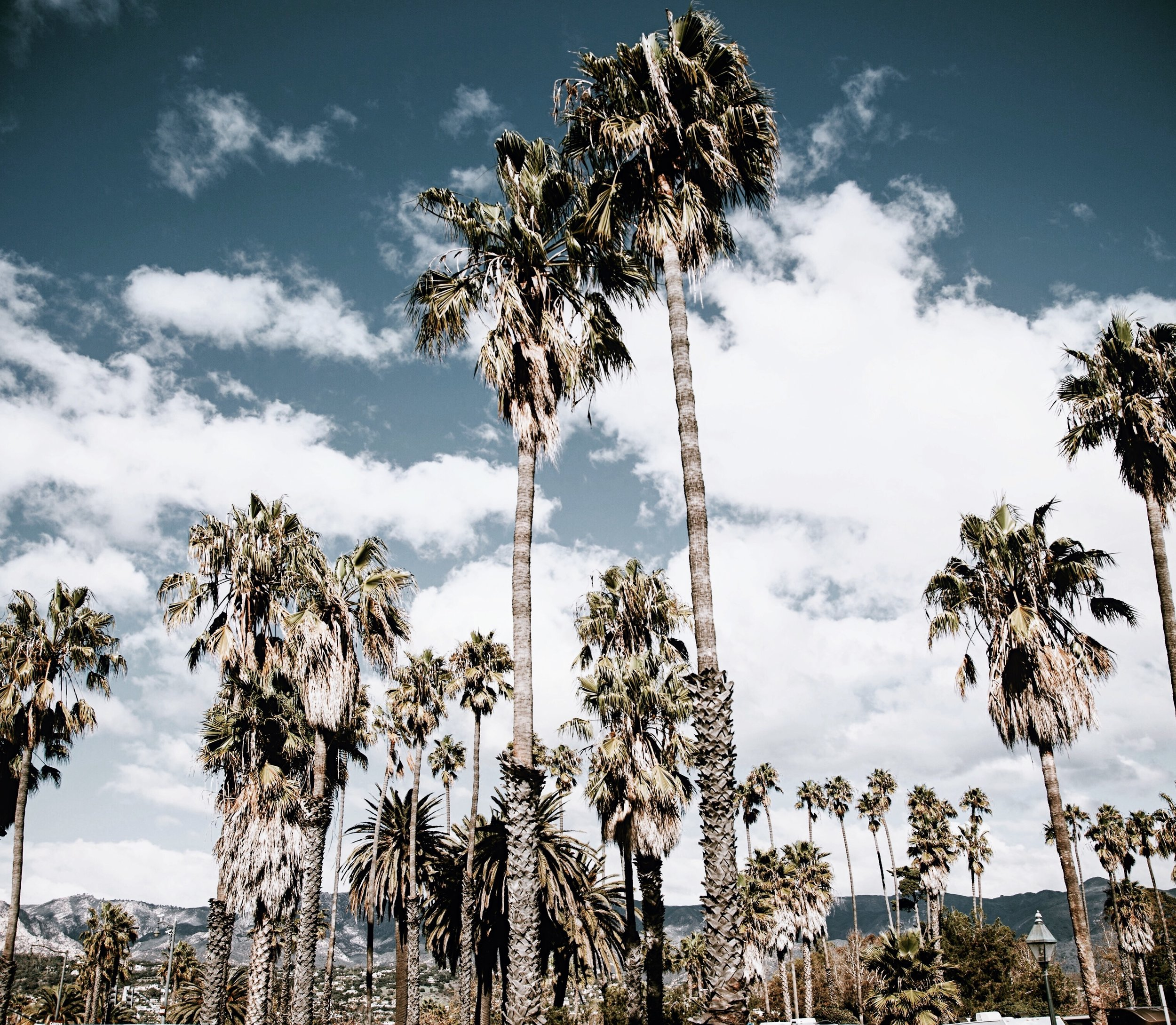 A Weekend In Santa Barbara // Mel Denisse