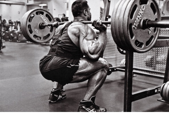 barbell squat.jpg
