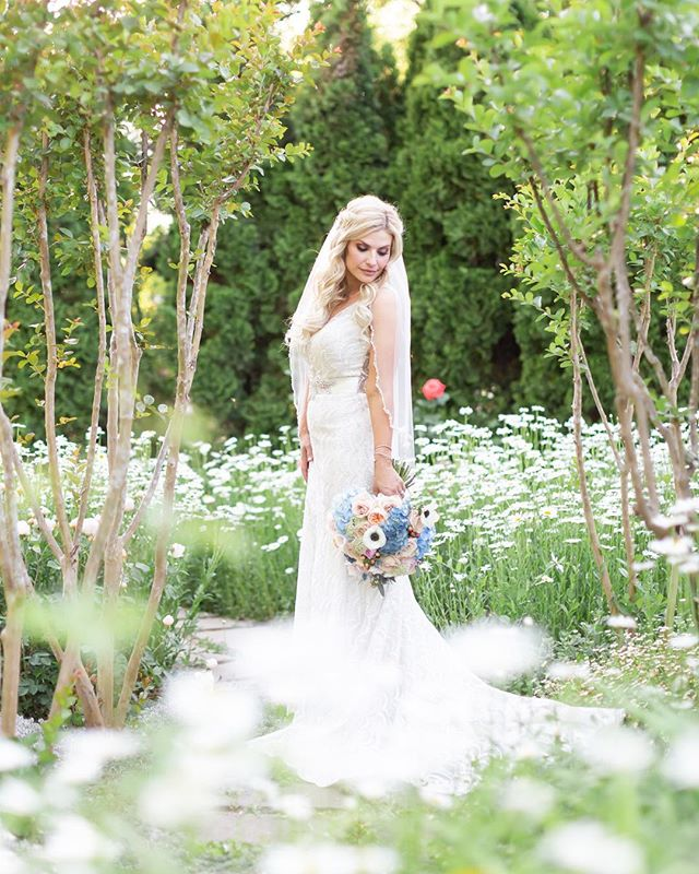 Absolutely dying over this photo of the most amazing bride! Yesterday's wedding was stunning, stunning, stunning!! @carats_confetti @veloursdesigns @goverranch #hollykikerphotography