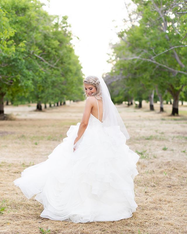 Feeling like dancing in the orchards because Hayley and Ryan's wedding day is on my blog today! Head to the link in my profile to see more of this gorgeous day! #hollykikerphotography  @goverranch @shayleeglazinerbeauty @floristwhitehouseredding @_la_luna_beauty_ @davidsbridal • • • #thisisredding #thatsdarling #darling #weddingchicks #aisleperfect #APbride #huffpostido #smpweddings #thedailywedding #marthaweddings #weddingwire #reddingwedding #theknot #norcalwedding⠀#greenweddingshoes #chicophotographer #ruffledblog #reddingphotography #reddingphotographer #wcengaged #chicowedding #sonomawedding #napawedding #hollykiker #reddingbridalshow #norcalweddings