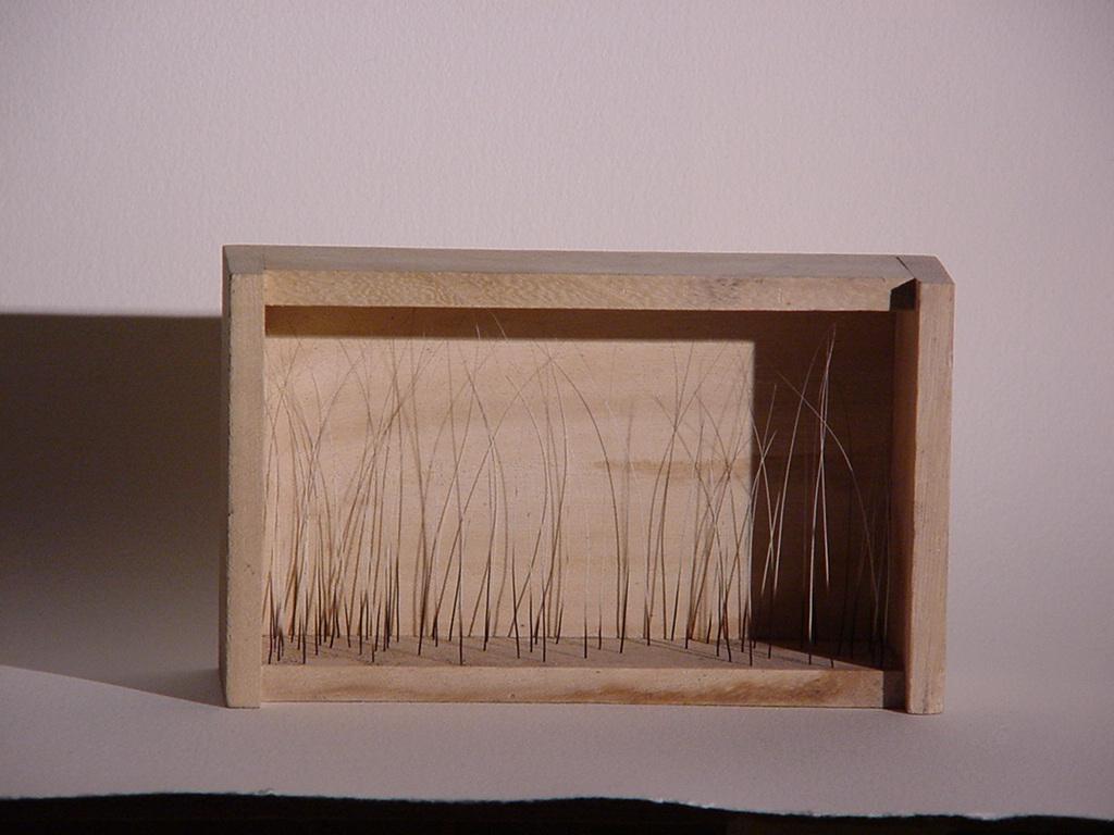 Whisker box.
