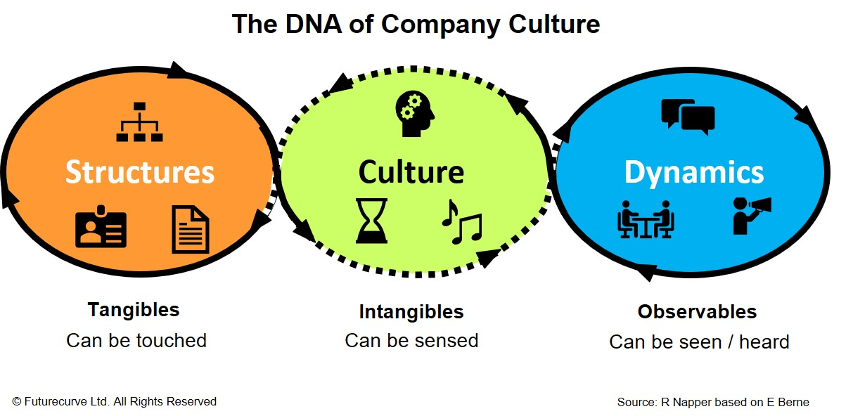 The DNA of Company Culture.jpg