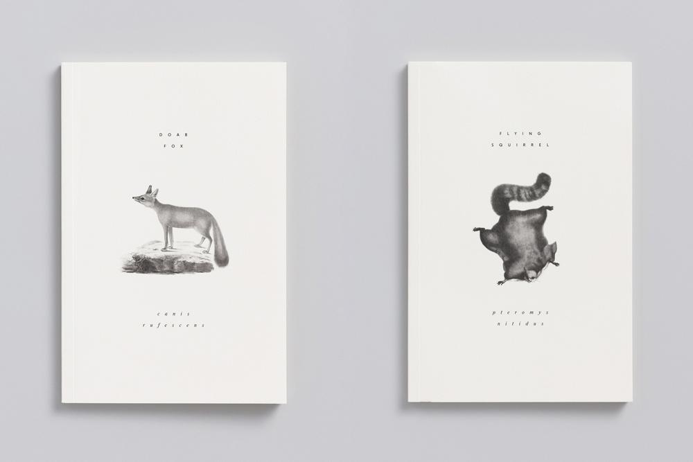 Reliefs_animaux_adrienne_bornstein_01.jpg