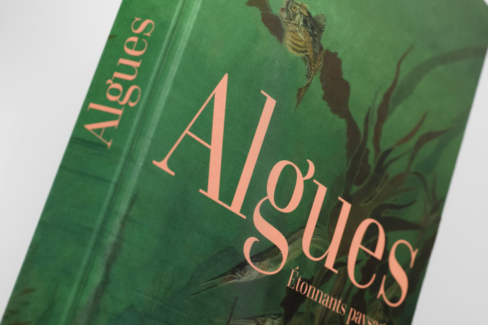 adrienne-bornstein-algues-museum-histoire-naturelle-delachaux-niestle_02.jpg