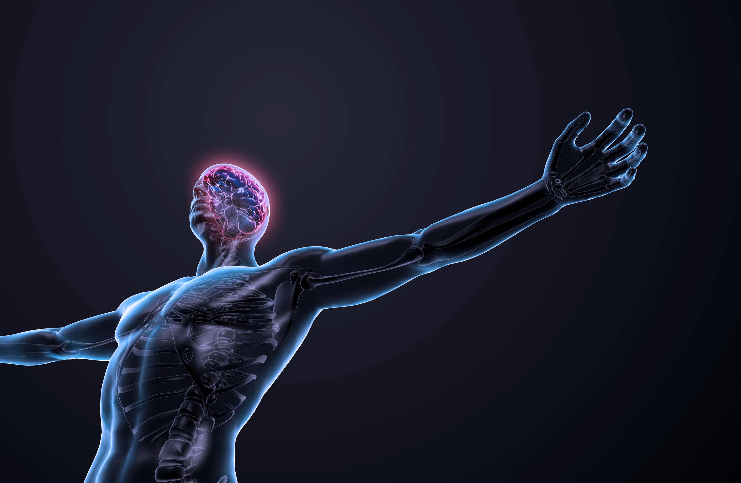 spine chiropractic