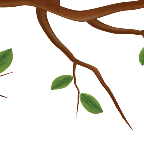tree_even_29.png