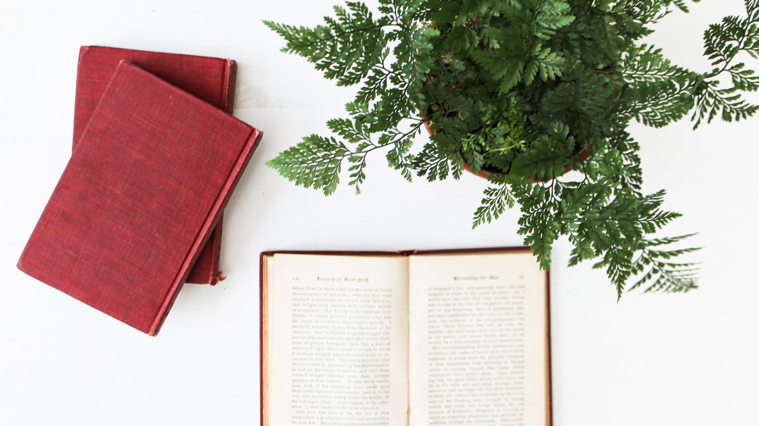 book plant DeathtoStock.jpg