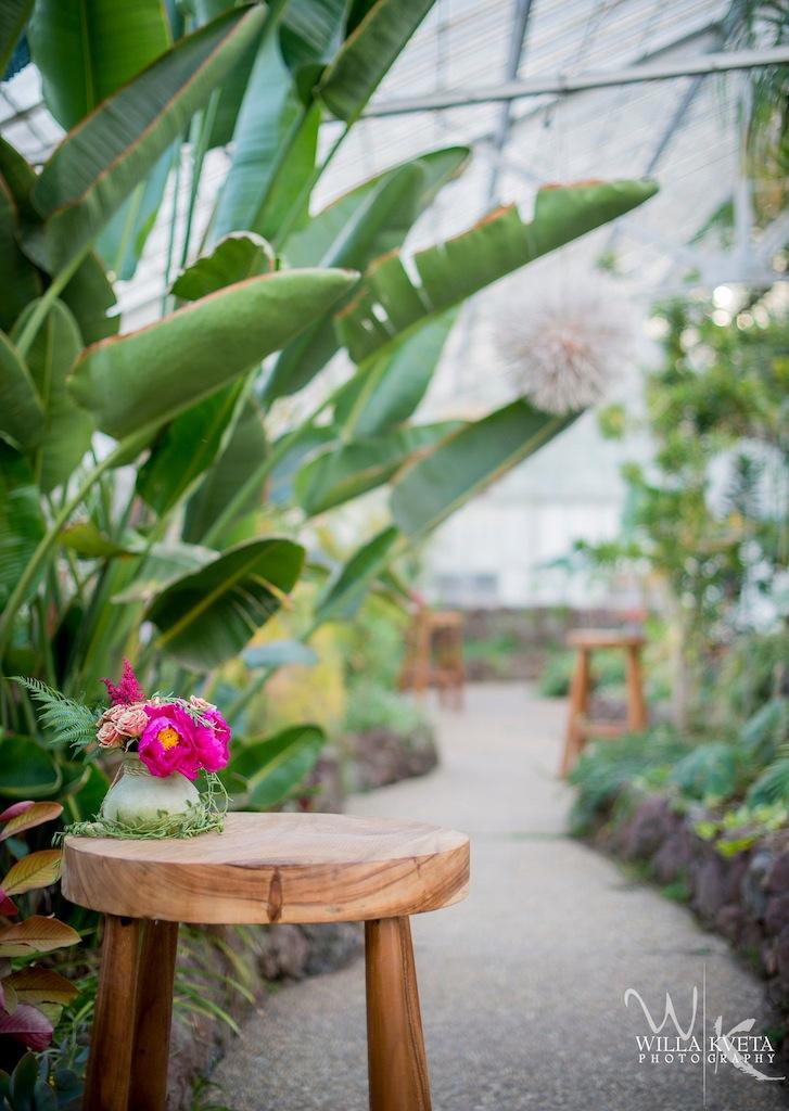 Acacia Cocktail Greenhouse.JPG