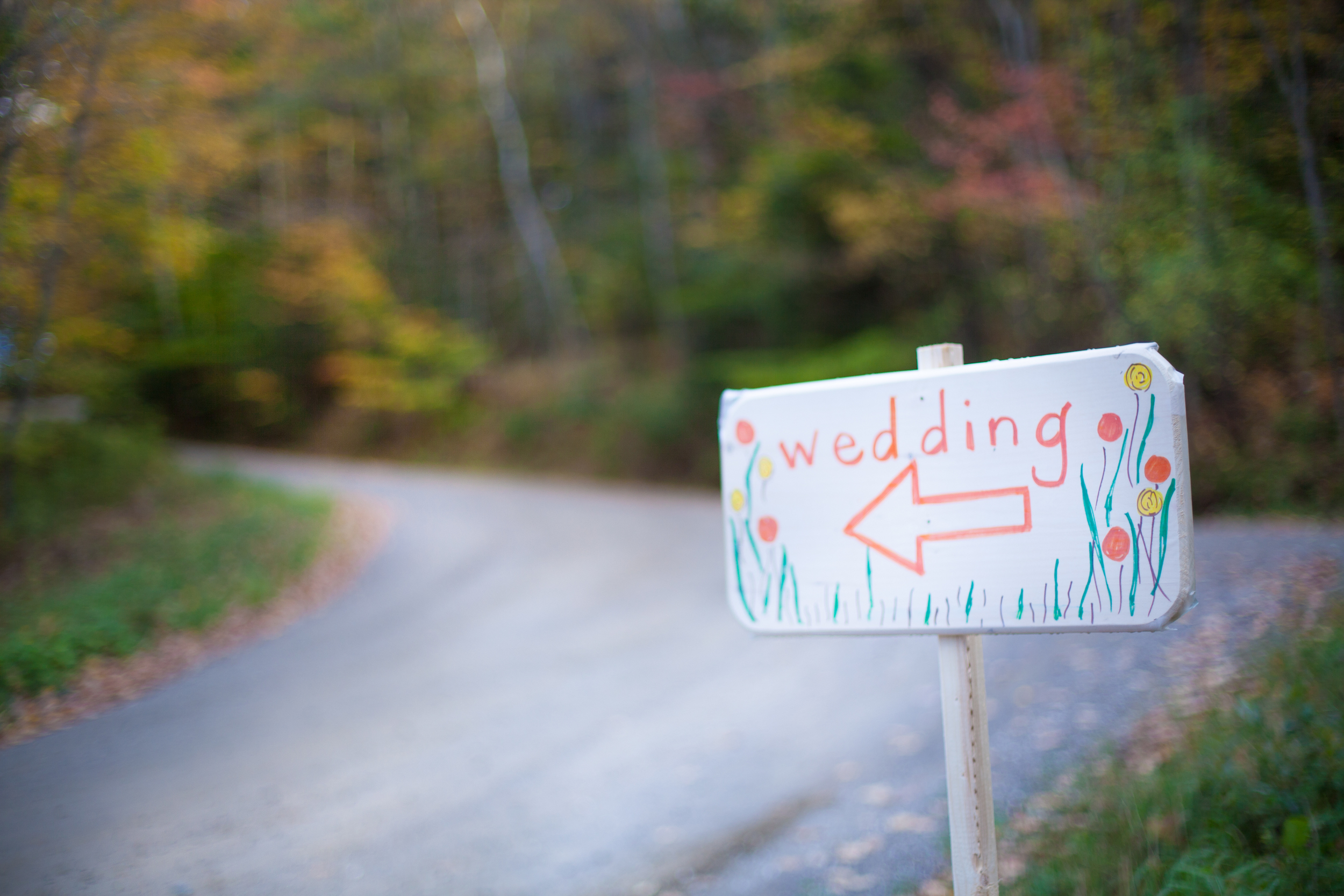 Sasha+Anders_LS_ weddingSign.jpg