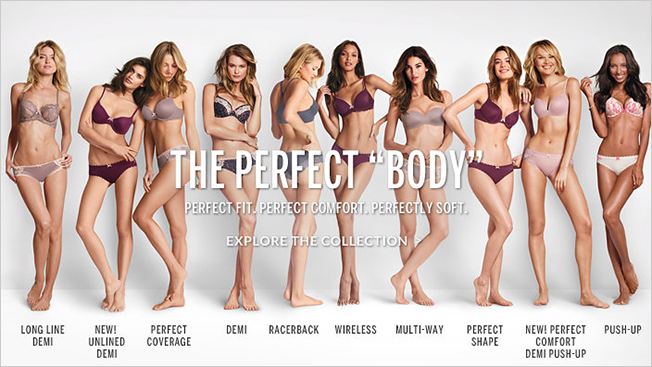 victorias-secret-perfect-body-hed-2014_0.png