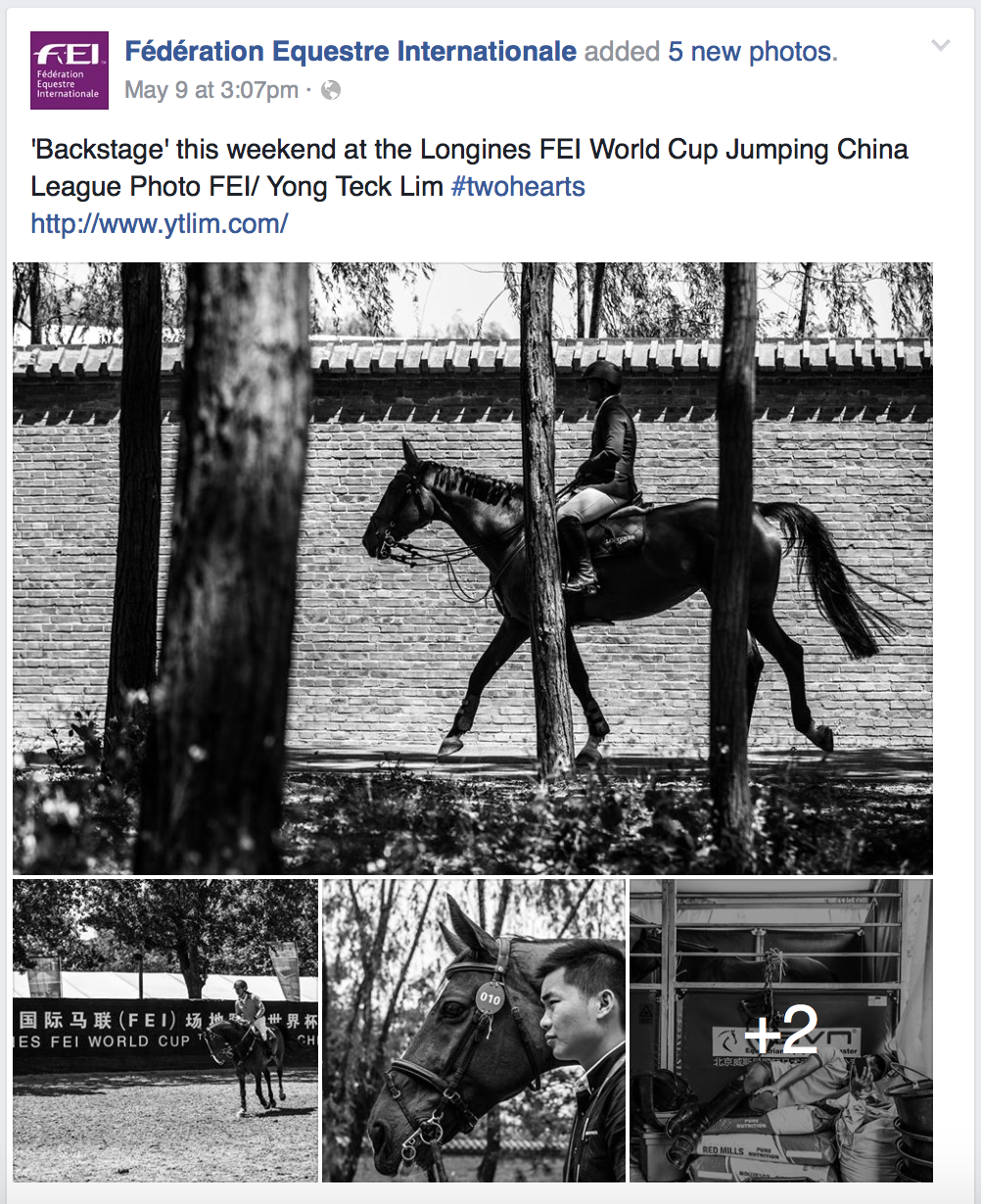 FEI World Cup Jumping - China League for Fédération Equestre Internationale (www.fei.org)