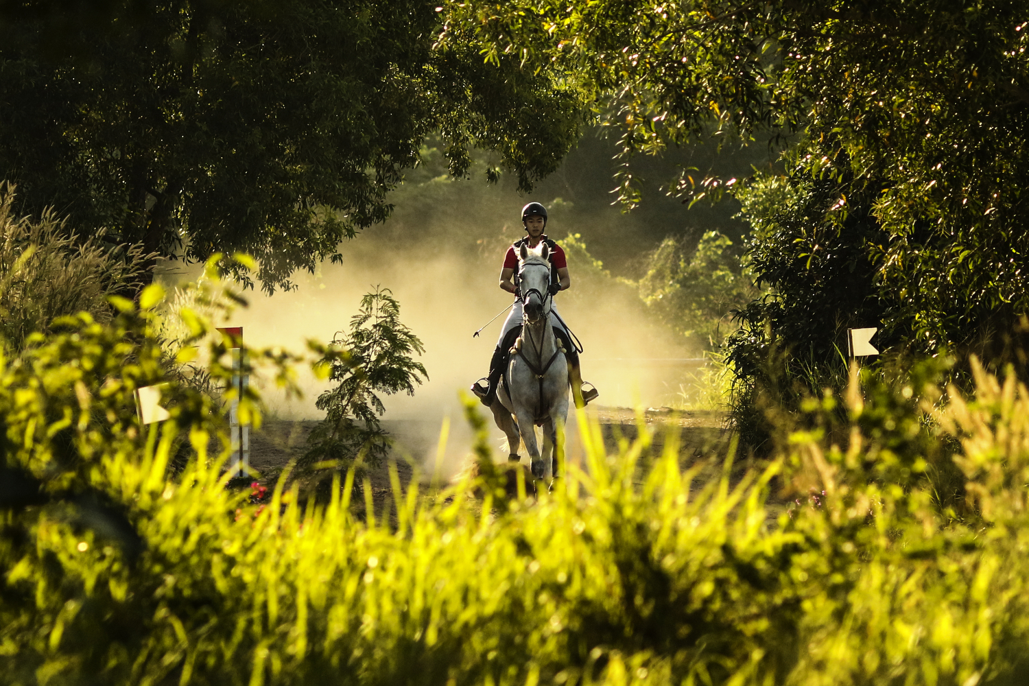 Supanut Wannakool of Thailand rides Luminous during the FEI Asia Eventing CCI1* Championship on December 9, 2017 in Pattaya, Thailand.