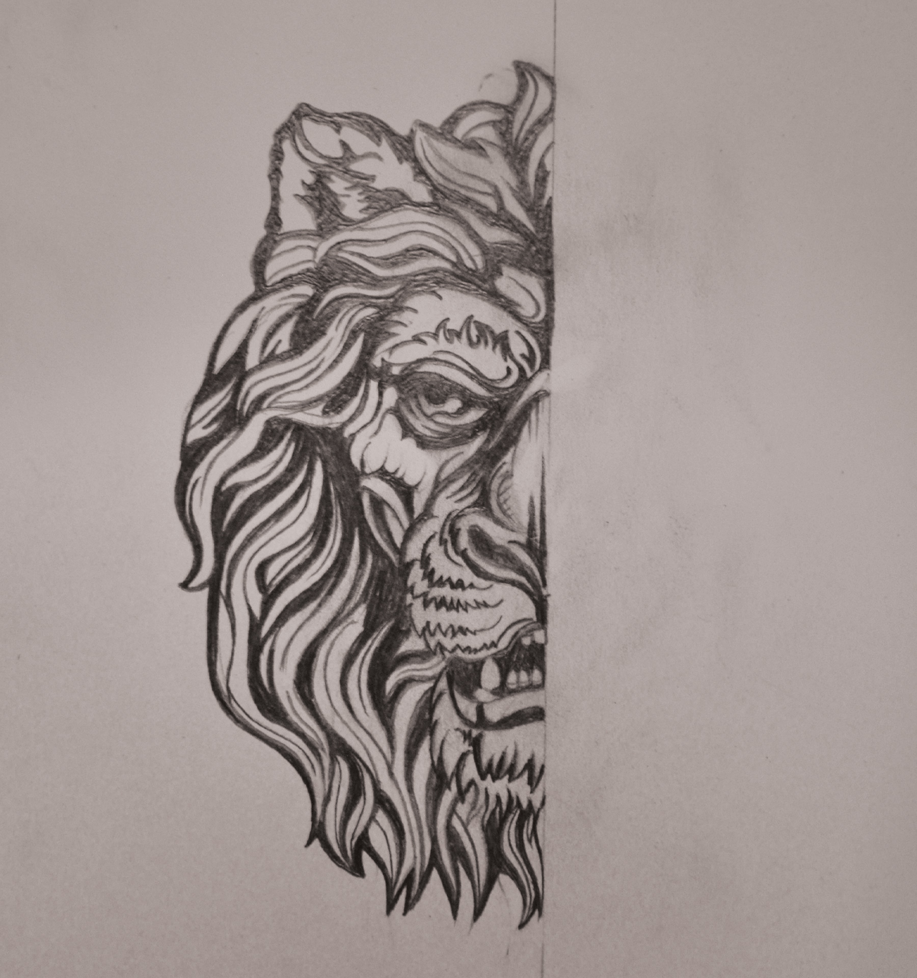 LION_illustration5.jpg