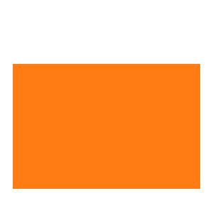 Ashford Castle logo orange