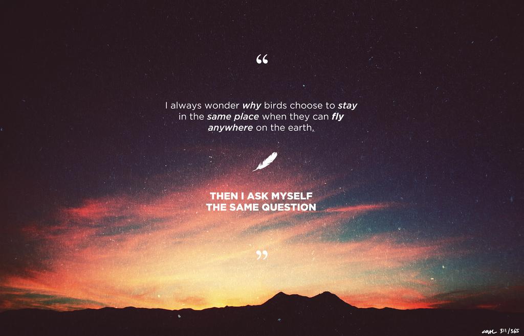 harun yahya quote i always wonder why birds chris ruggiero blog