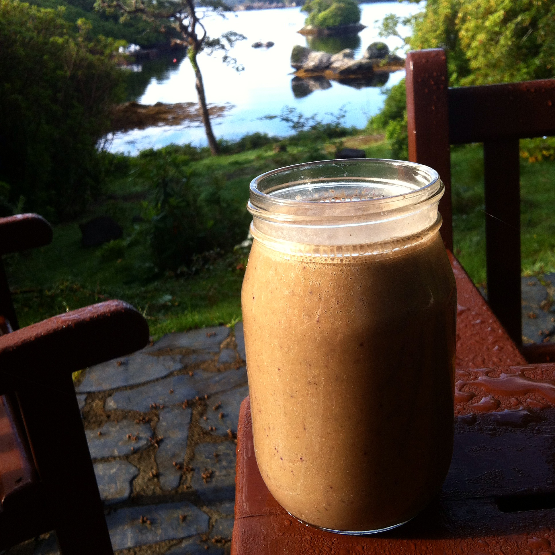 Morning Smoothie & Glengarriff Harbour