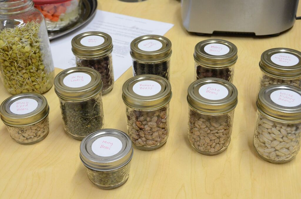So Many Varieities of Pulses