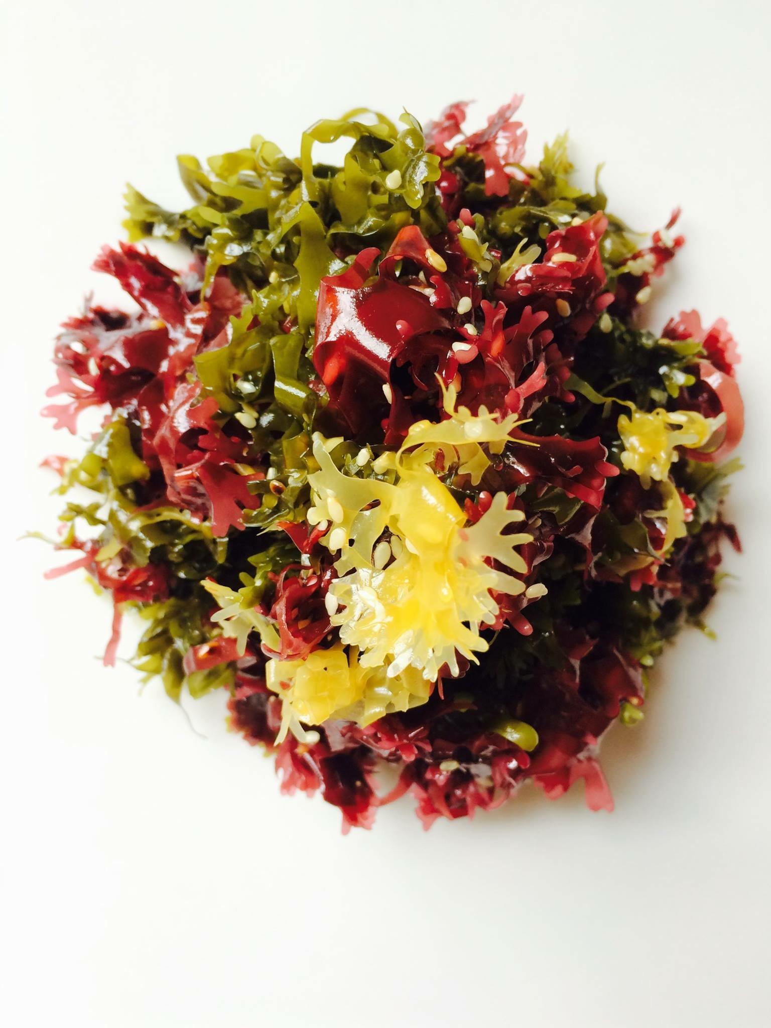 Kaiso Seaweed Salad