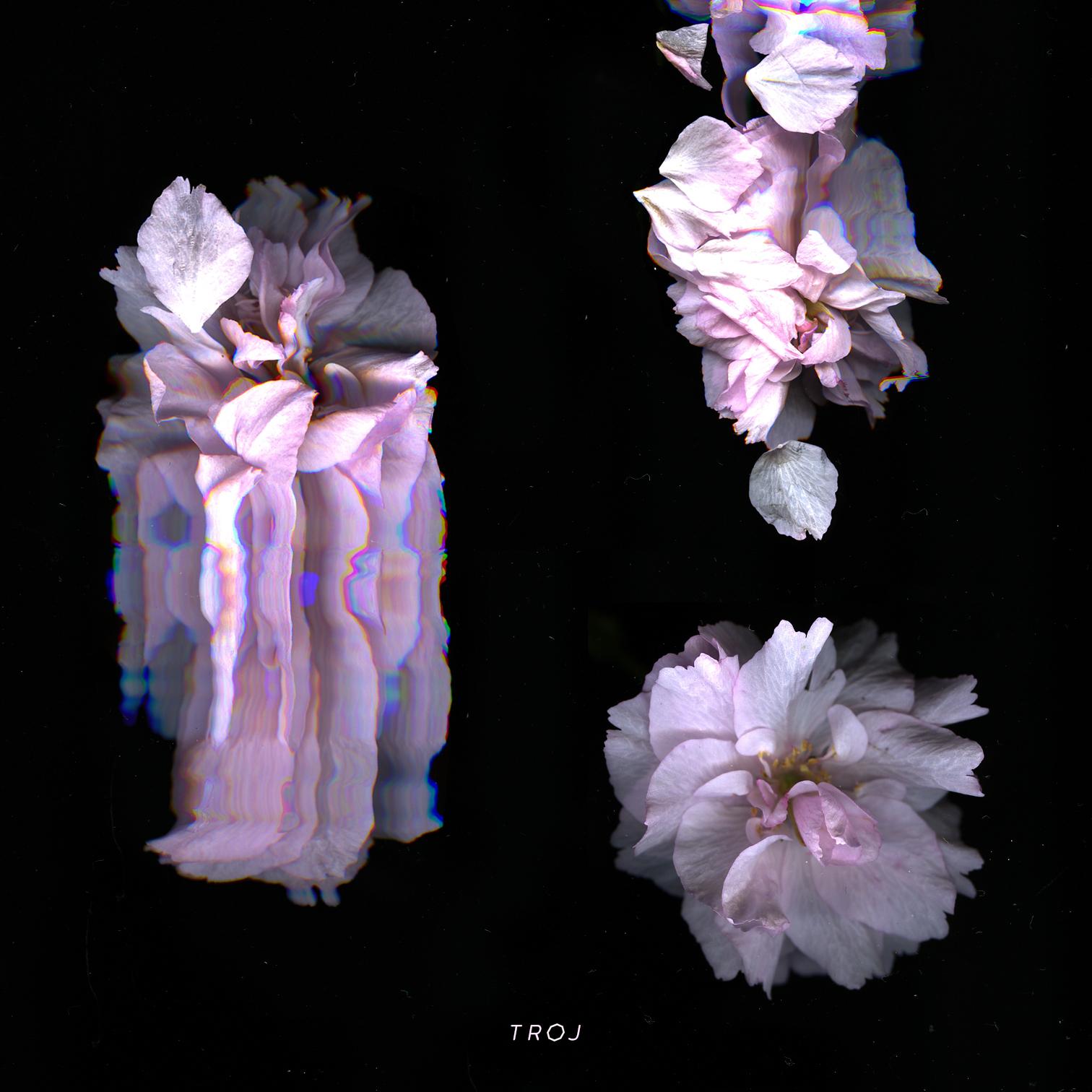 VA - TROJ EP COVER ART