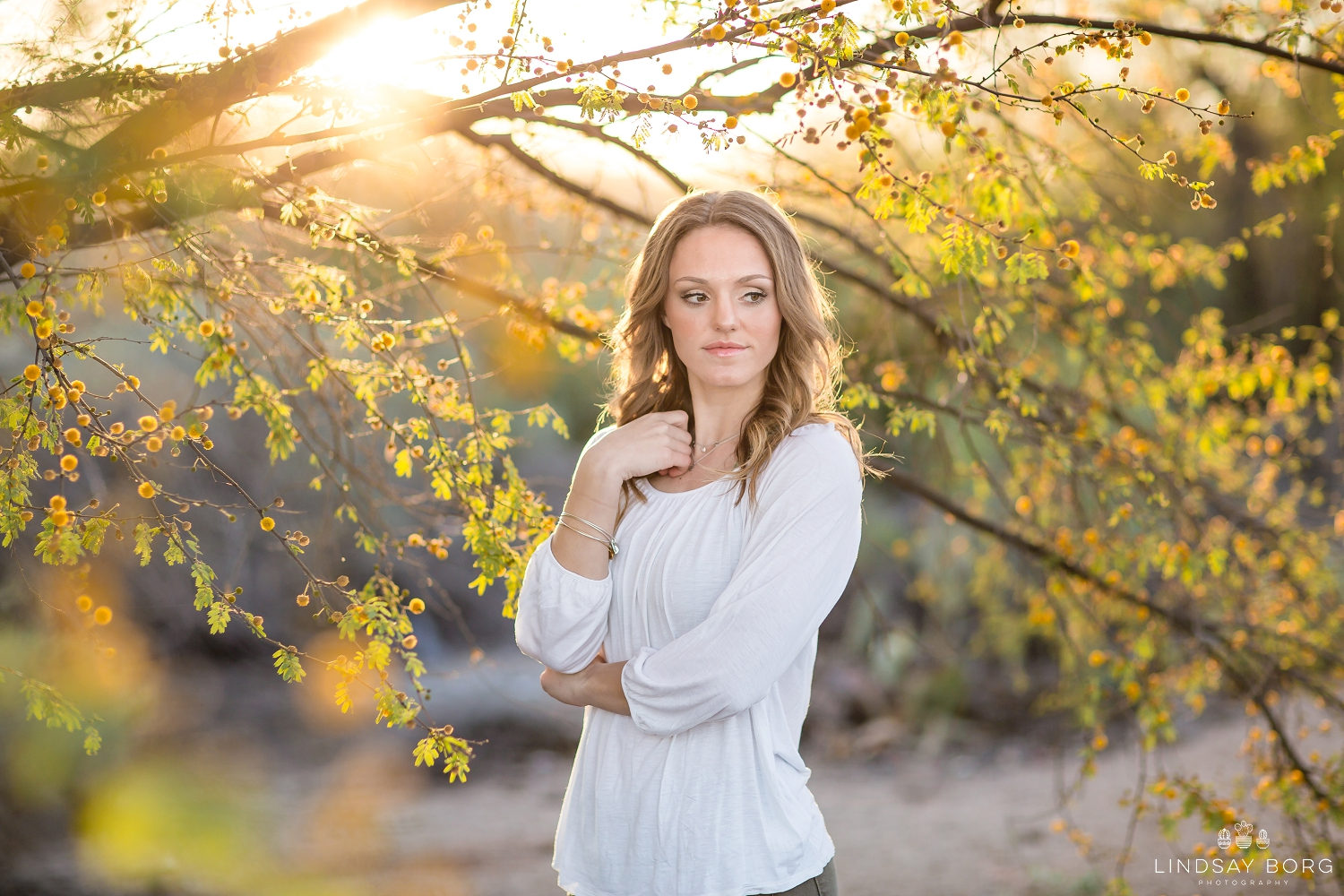 Lindsay-Borg-Photography-arizona-senior-wedding-portrait-photographer-az_1012.jpg
