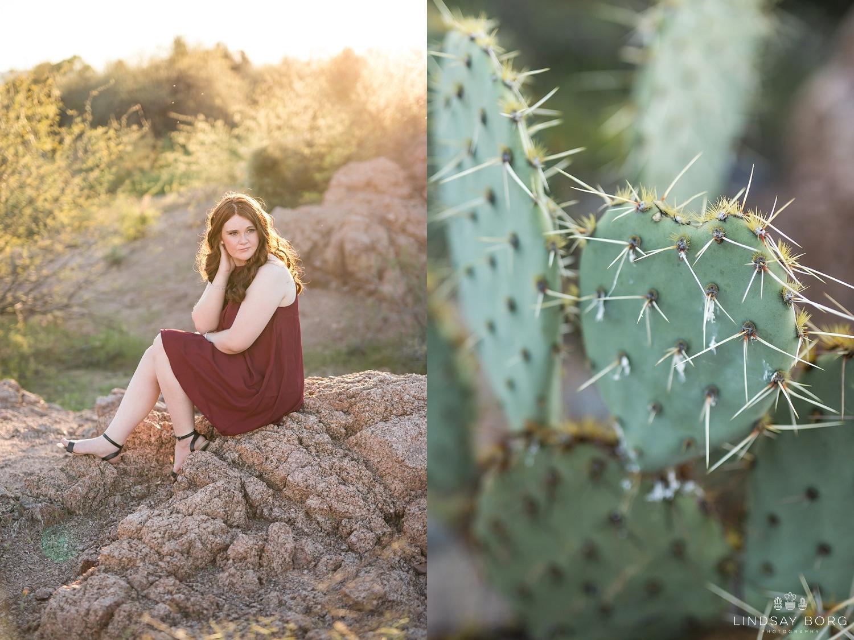 Lindsay-Borg-Photography-arizona-senior-wedding-portrait-photographer-az_1060.jpg