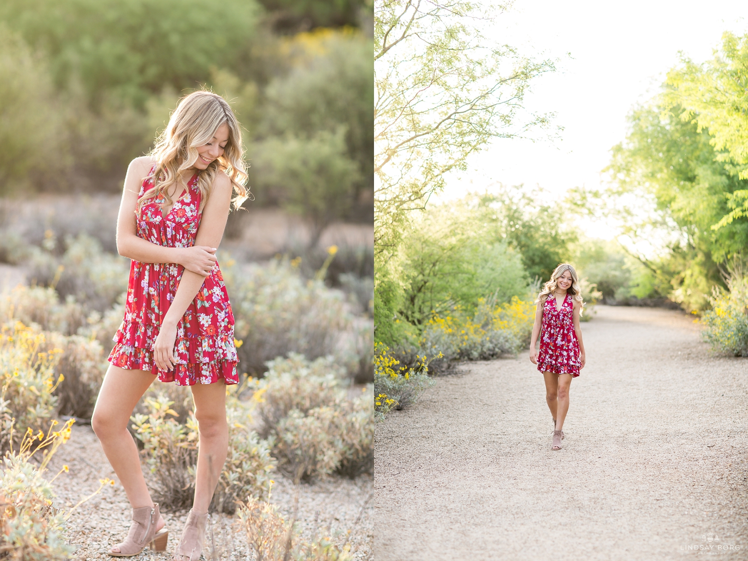 Lindsay-Borg-Photography-arizona-senior-wedding-portrait-photographer-az_2068.jpg