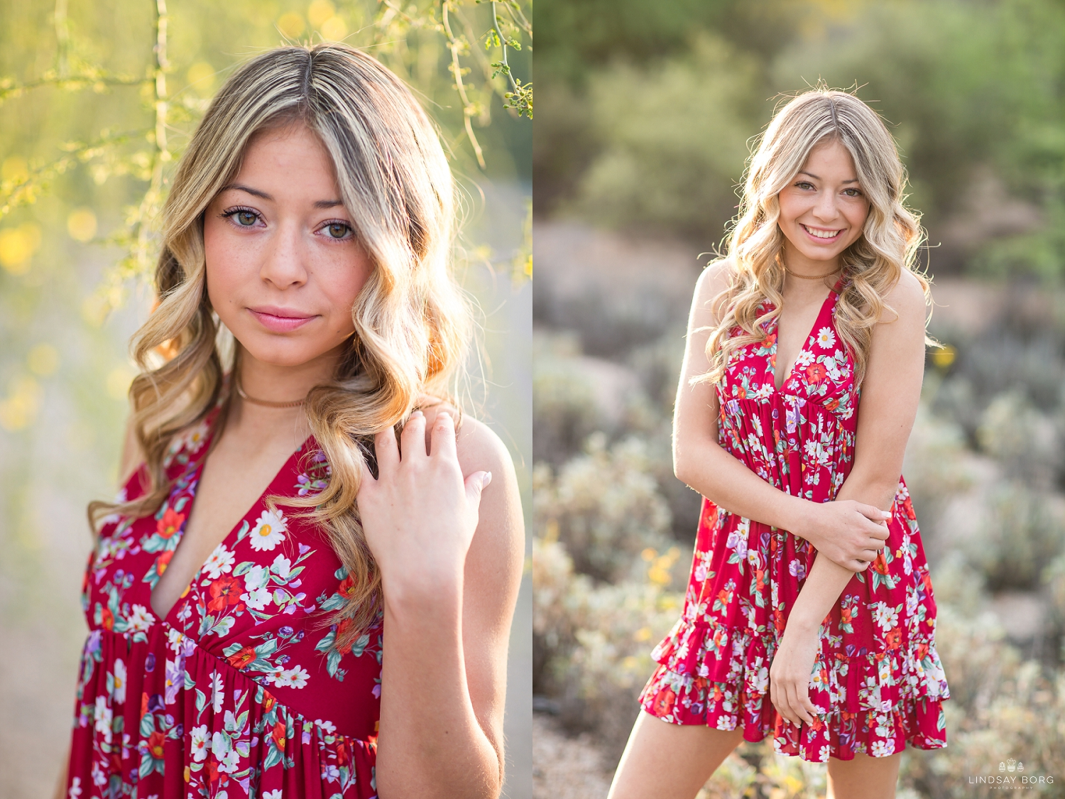 Lindsay-Borg-Photography-arizona-senior-wedding-portrait-photographer-az_2070.jpg