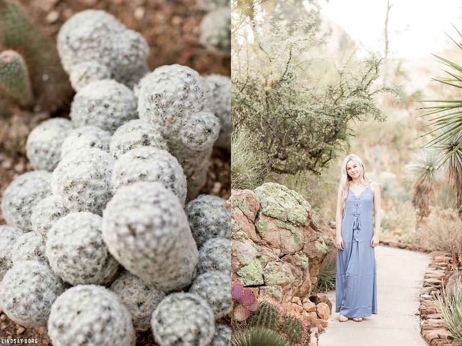 Lindsay-borg-photography-arizona-senior-photographer (5).jpg