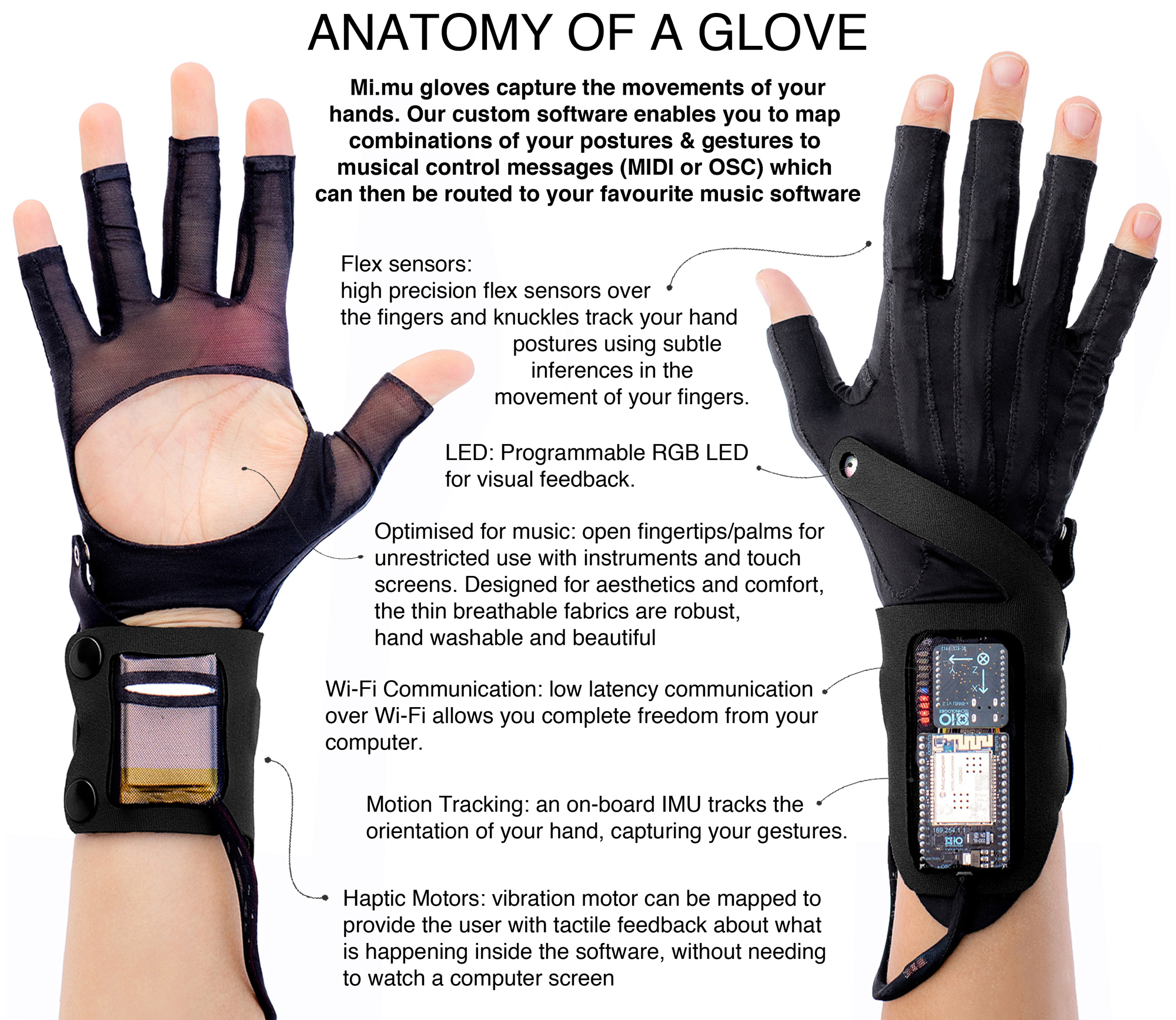 anatomy of a glove web.jpg