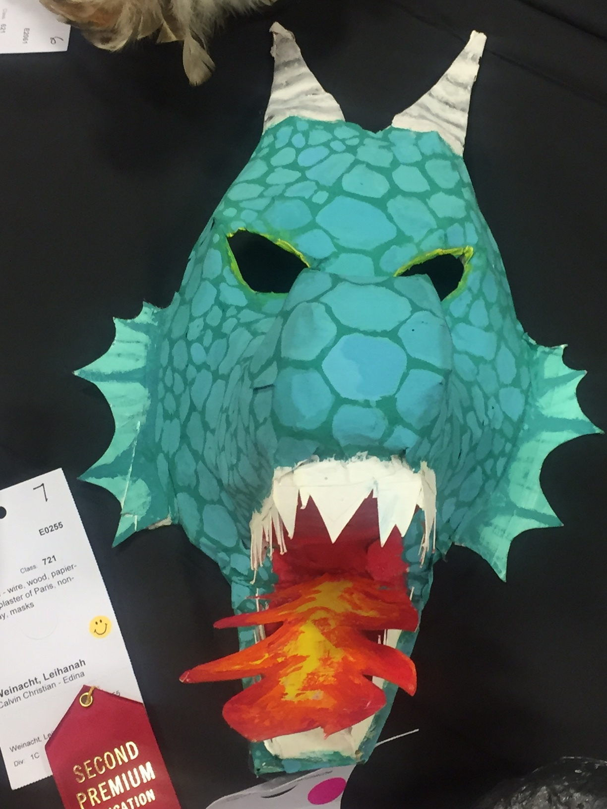 Grade 7 - Celia Fuhrman,Sunrise Park Middle School Dragon Mask