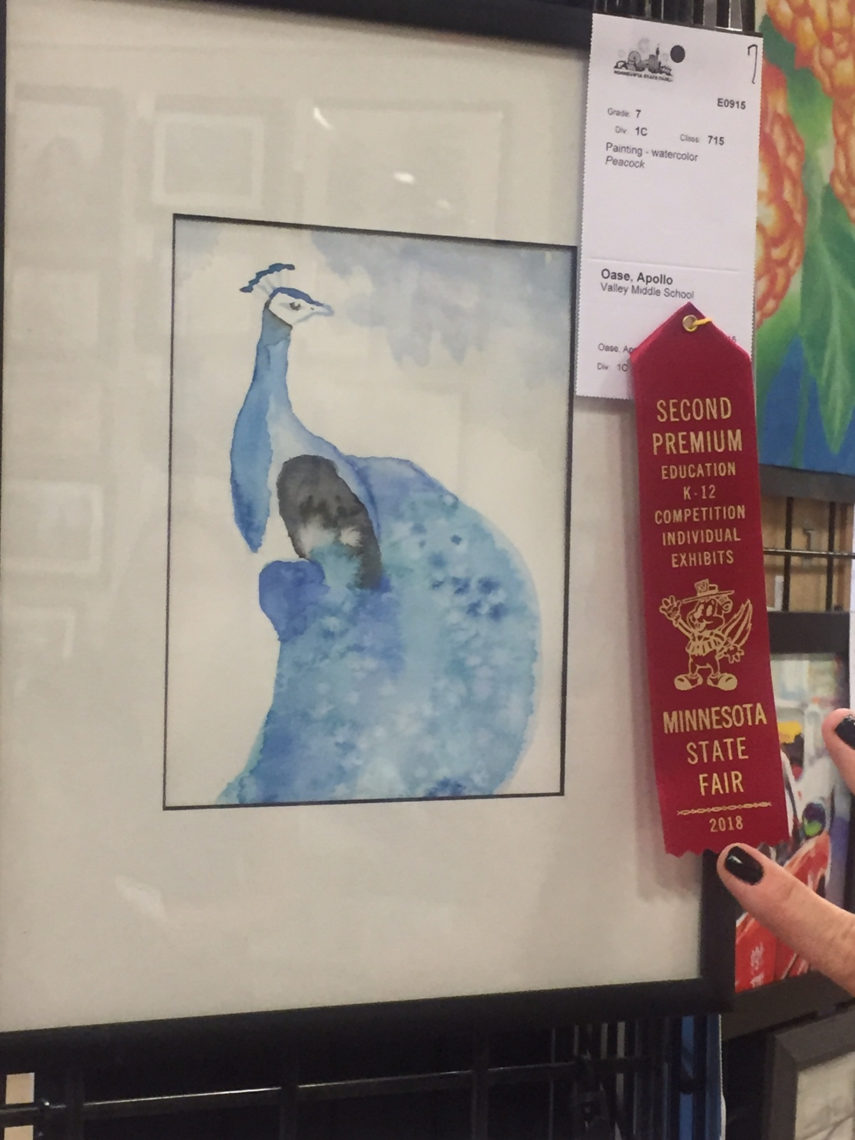 Grade 7 - Apollo Oase,Valley Middle SchoolWatercolor Painting-Peacock