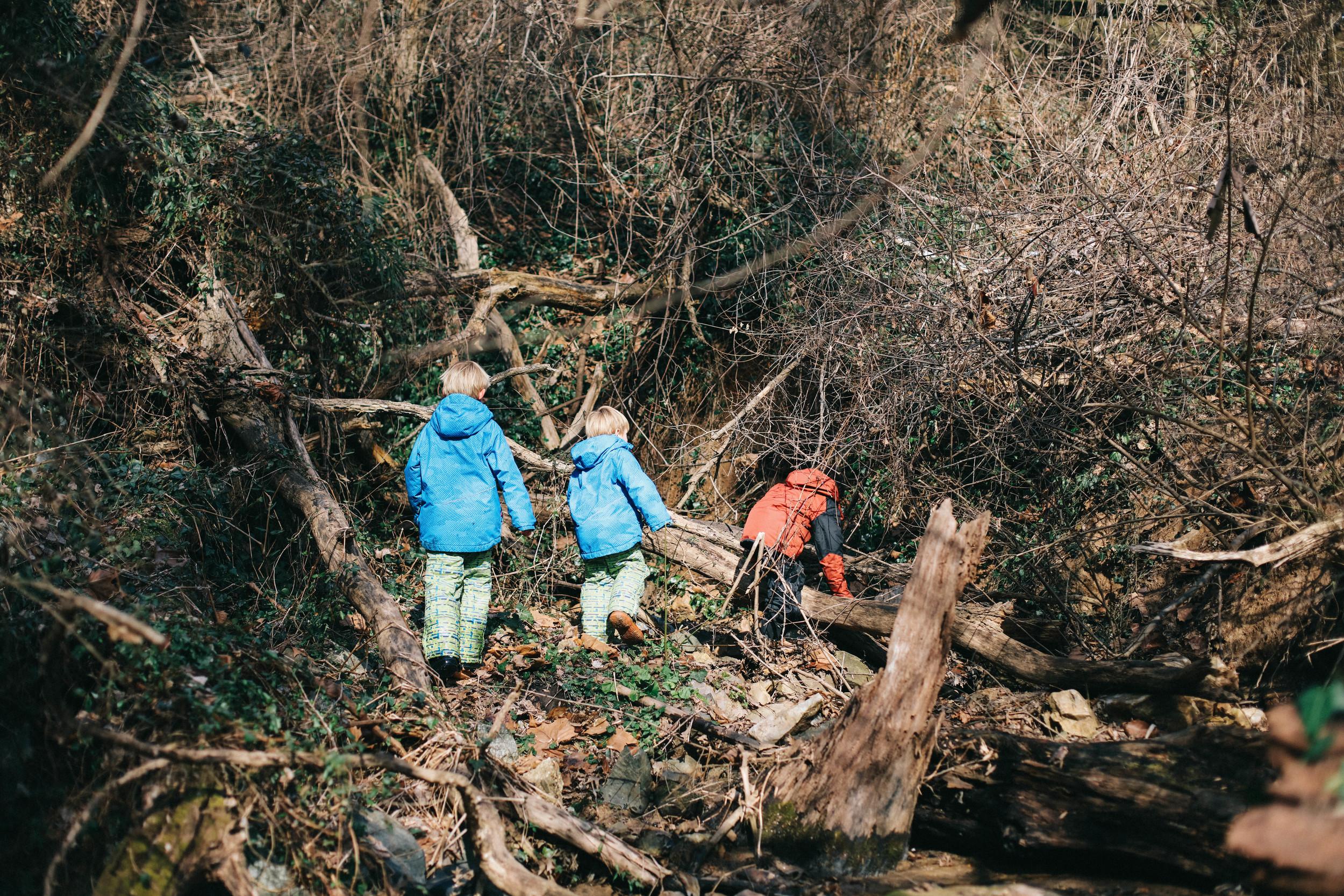 Waldorf in the Woods-7.jpg