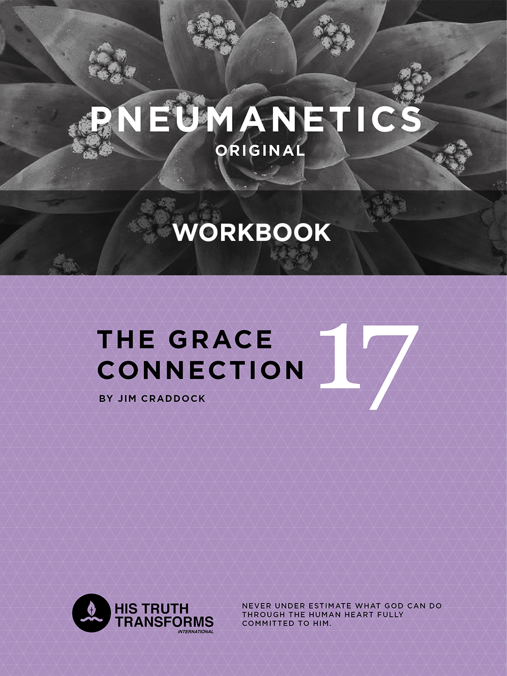 pneumanetics-17-workbook.jpg